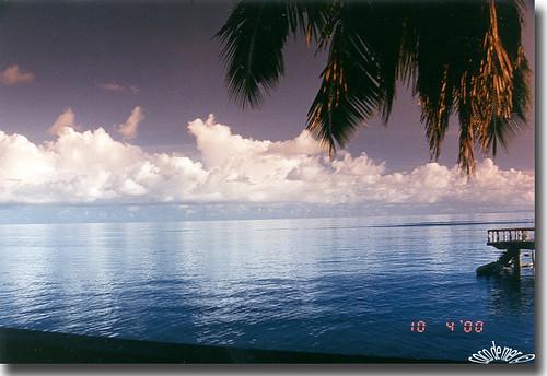 ocean travel flowers trees sunset fish orchid clouds forest sunrise palms nationalpark paradise wolken worldwide coco tropic seychelles endemic praslin anselazio mywinners valledemai eliteimages waterenvirons goldsealings