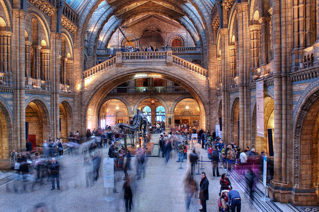 Foyer Museum Uk : Natural history museum entrance hall flickr photo