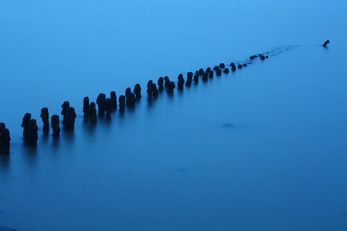 River Orwell and stumps, 20 January 2009