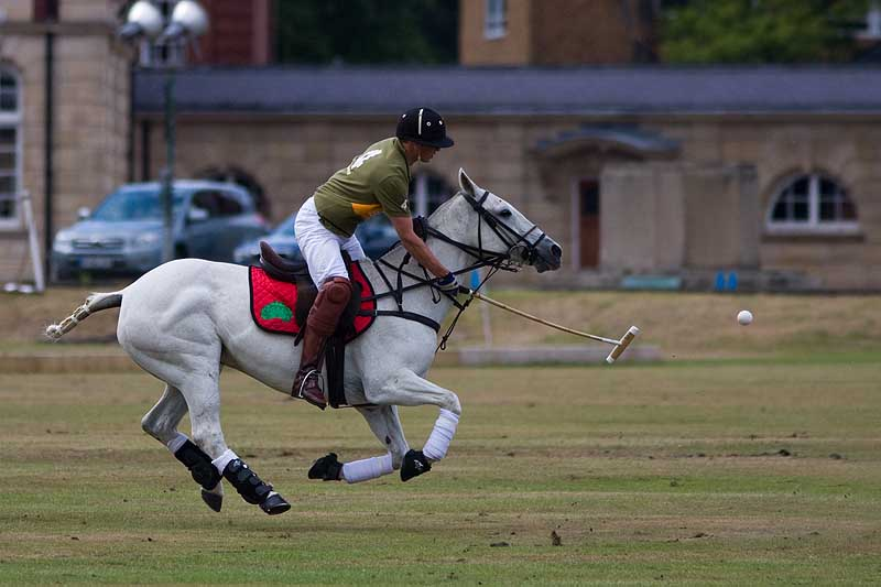 Cavalry polo (William Wales)
