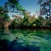 Gainer-Springs-9---8x10-