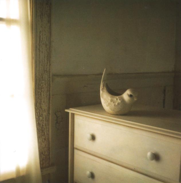 ursulasbirdie