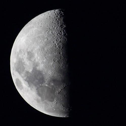 Moon phase indicator forex