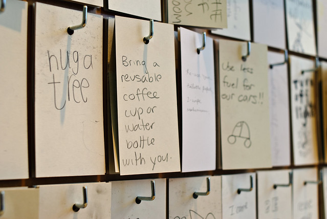 Ideas about saving the environment written on notecards left by concerened visitors the the California Academy of Sciences
