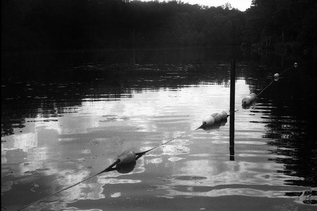 Hinckley (MN) United States  city photos gallery : swimming line | St. Croix State Park, Hinckley, MN | By: mhartford ...