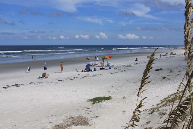 Dog Beach Florida New Smyrna