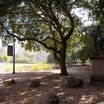 UC Berkeley Campus 001