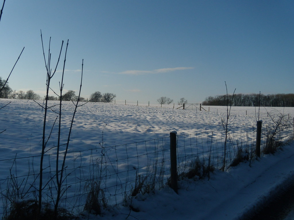 Snowy expanse Saunderton via West Wycombe (short Walk)