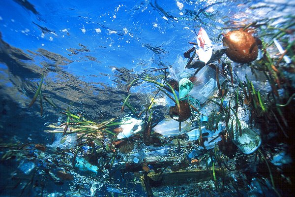 plastic trash in ocean