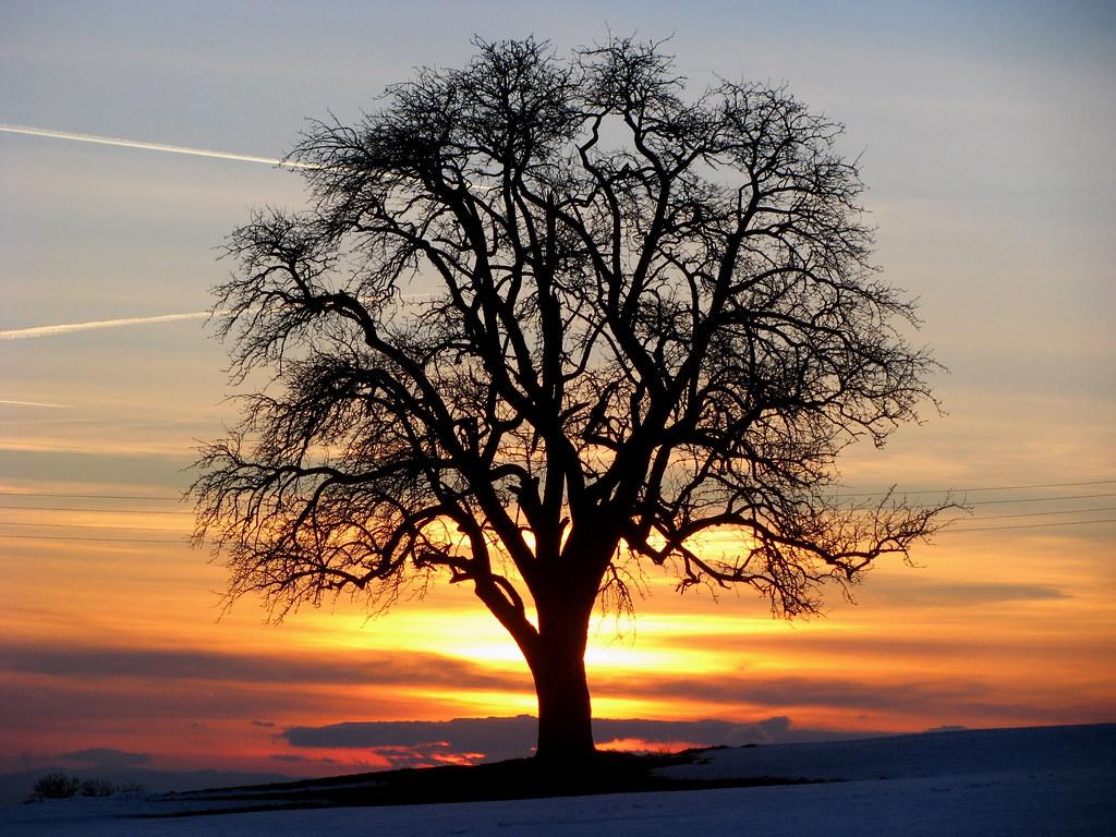 bantiger, bolligen, switzerland sunrise sunset times, Garten und erstellen