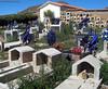 Bolivia - Sucre - Tarabuco Market - Cemetery
