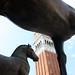 Cavalli della Basilica di S. Marco