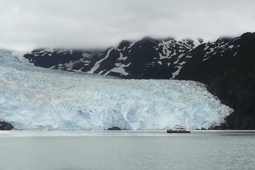 Aialik Glacier, Kenai peninsula, Alaska.