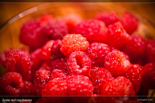Some red raspberries [explored]