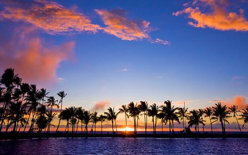 sunset silhouette palms hawaii lagoon bigisland kohala waikoloa anaehoomalu 8730