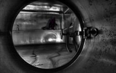 Inside the yeast tank