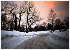 hiver / printemps 09