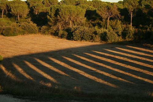 sunset shadow portugal tramonto arch ombra aqueduct arco tomar portogallo acquedotto qdesign querin dospegoes renéquerin