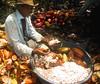 Cocoa Harvesting