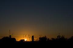 Coucher de soleil / IMG_3502