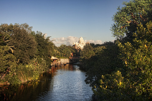 africa travel bridge trees sky plants plant reflection tree water river unitedstates florida disney wdw waltdisneyworld themepark animalkingdom disneysanimalkingdom expeditioneverest 31kmswoforlando discoveryriver