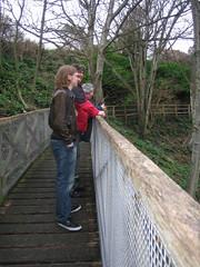 Eastbourne bridge 085