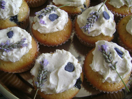 Lavender, Blueberry & Violet Cupcakes