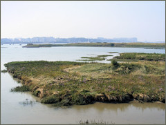 wetland, lagoon, estuary, lake, bay, natural environment, reflection, inlet, shore, salt marsh, coast,