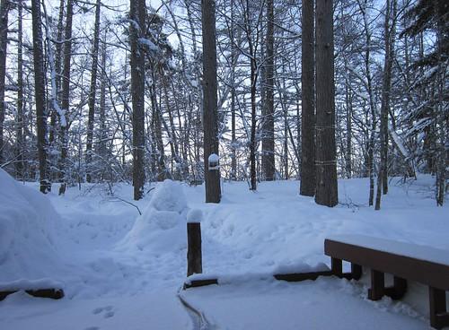 氷点下18度の朝 2014年3月11日06:50 by Poran111