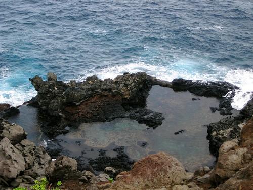 maui, hawaii, vacation, tropical, island, r… IMG_1715