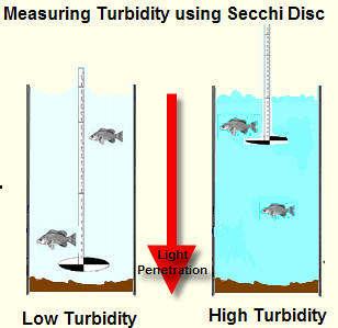 Measuring Turbidity Using A Secchi Disc Flickr Photo