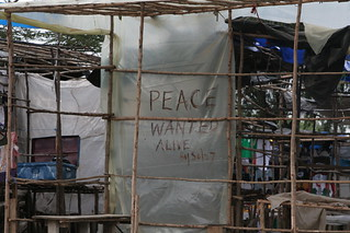 Peace Wanted Alive-Toi Market Rebuilding