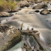 Idaho mountain stream