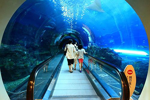 6T81海生館-珊瑚王國-海底隧道