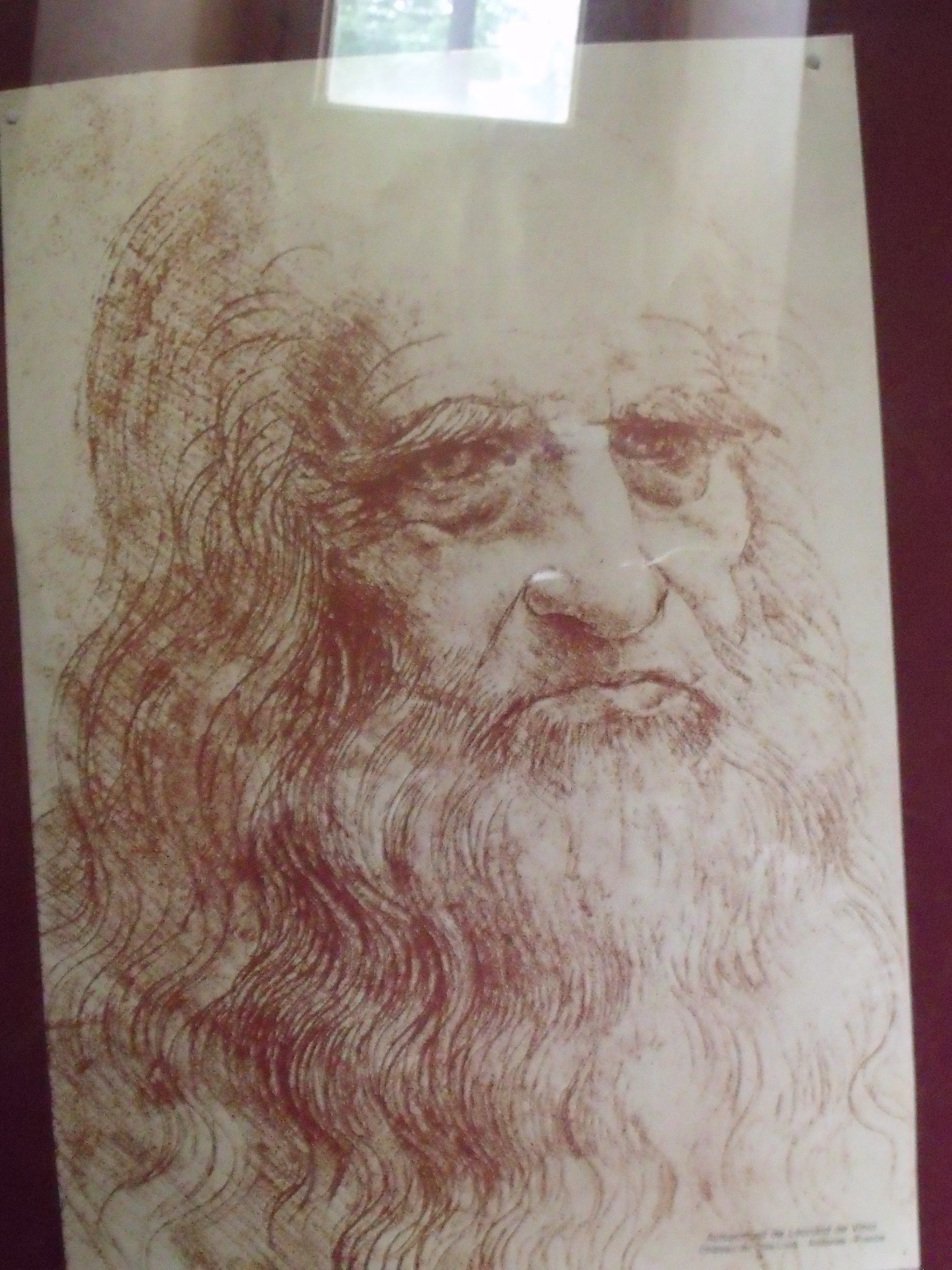 leonardo da vinci project by angela c