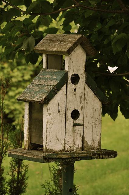 cabane d 39 oiseau flickr photo sharing. Black Bedroom Furniture Sets. Home Design Ideas