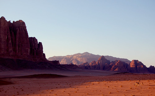 sunset landscape evening sand desert sundown wadirum jordan camel valley camels convoy 日落 lateafternoon 沙漠 骆驼 约旦 车队
