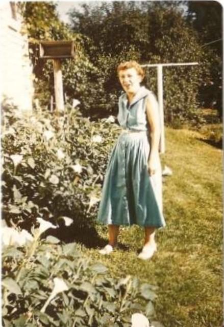 Grandma Jessie Moonflowers 1950s My Great Grandma