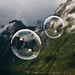 Clear soap bubbles over the fjord
