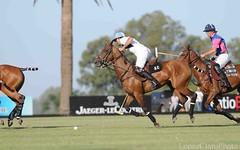 Argentina Polo Tour 14.Feb.2009