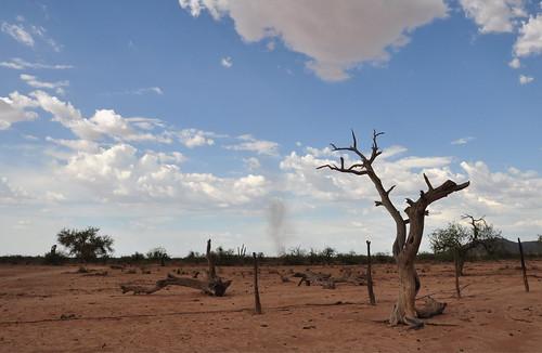 arizona clouds landscape desert sonorandesert