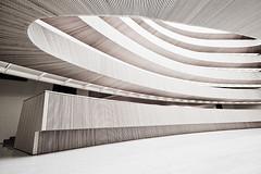wooden curves no.1
