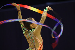 aerialist(0.0), rings(0.0), event(1.0), sports(1.0), performing arts(1.0), gymnastics(1.0), entertainment(1.0), performance(1.0), acrobatics(1.0), rhythmic gymnastics(1.0), performance art(1.0),