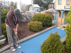 asphalt(0.0), outdoor structure(0.0), driveway(0.0), lawn(0.0), flooring(0.0), waterway(0.0), backyard(1.0), shrub(1.0), garden(1.0), yard(1.0), estate(1.0), miniature golf(1.0), landscaping(1.0), home(1.0), walkway(1.0),