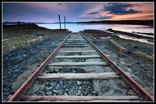 Trippy Tracks