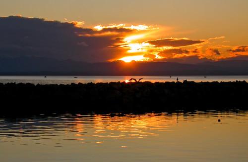 sunset sunrise nikon silhouettes hellas greece macedonia cycle makedonia faddoush