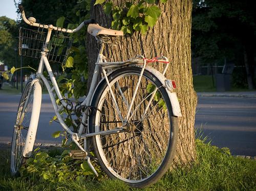 _Sun_bike_Larbyl