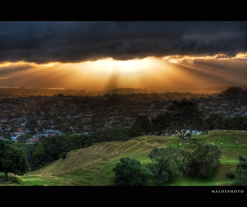 trees light newzealand cloud sun yellow canon dark landscape intense view auckland nz suburbs rays burst onetreehill copyrighted cornwallpark canon30d pleasedonotusewithoutmypermission maloe4 maloephoto maloephotography markemirali markemiraliphotography