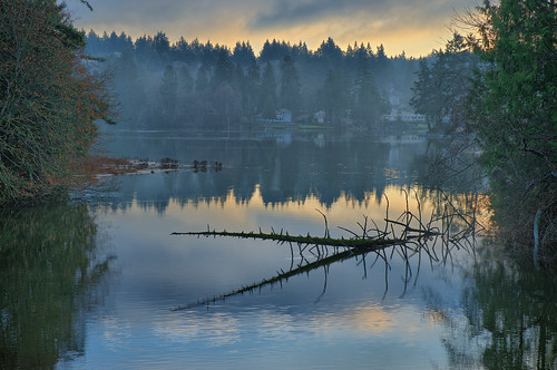 trees seascape reflection water fog clouds sunrise landscape washington pugetsound hdr wollechetbay