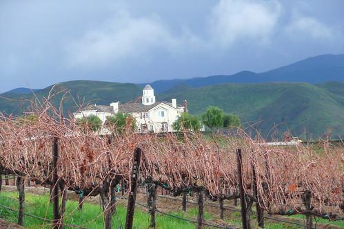 california green landscape vineyard vines cloudy hills winery rainy temecula darksky leonesse